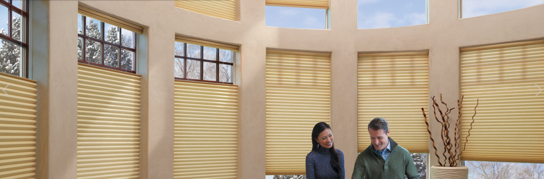 DUETTE® Honeycomb Shades U2013 Glenview Illinois